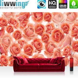 liwwing Vlies Fototapete 350x245 cm PREMIUM PLUS Wand Foto Tapete Wand Bild Vliestapete - Blumen Tapete Rosen Blumen Blüte Pflanze Liebe Natur rosa - no. 959