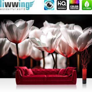 liwwing Vlies Fototapete 312x219cm PREMIUM PLUS Wand Foto Tapete Wand Bild Vliestapete - Blumen Tapete Blume Blüte Wasser Spiegelung Blätter rot - no. 2995