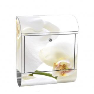 Edelstahl Wandbriefkasten XXL mit Motiv & Zeitungsrolle | Orchidee Blumen Weiß Natur Pflanzen Abstrakt | no. 0201