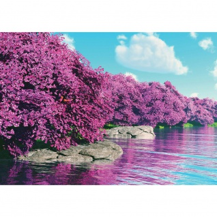 Fototapete Blumen Tapete Pflanzen, Wasser, Himmel bunt | no. 3569