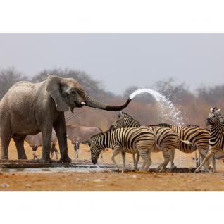 liwwing Vlies Fototapete 104x50.5cm PREMIUM PLUS Wand Foto Tapete Wand Bild Vliestapete - Afrika Tapete Elefanten Zebra Wasser Giraffe Antilopen braun - no. 1294 - Vorschau 2