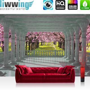 liwwing Fototapete 368x254 cm PREMIUM Wand Foto Tapete Wand Bild Papiertapete - Wald Tapete Terrasse Balkon Säulen Bäume Wald Allee Sommer grau - no. 2354