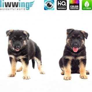 Wandsticker - No. 4831 Wandtattoo Sticker Hund Welpe Tiere Haustiere