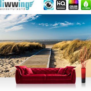 liwwing Vlies Fototapete 104x50.5cm PREMIUM PLUS Wand Foto Tapete Wand Bild Vliestapete - Strand Tapete Meer Düne Gras Weg Wolken Himmel natural - no. 2948