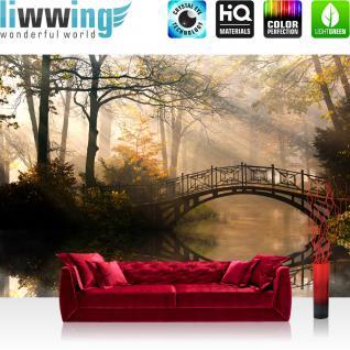 liwwing Vlies Fototapete 400x280 cm PREMIUM PLUS Wand Foto Tapete Wand Bild Vliestapete - Wald Wasser Bäume - no. 264
