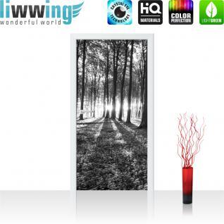 liwwing Vlies Türtapete 91x211 cm PREMIUM PLUS Tür Fototapete Türposter Türpanel Foto Tapete Bild - Sonnenuntergang Wald Bäume Wiese - no. 642