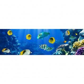 Leinwandbild Underwater World Aquarium Unterwasser Meer Fische Riff Korallenriff | no. 33 - Vorschau 3