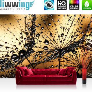 liwwing Vlies Fototapete 208x146cm PREMIUM PLUS Wand Foto Tapete Wand Bild Vliestapete - Blumen Tapete Pusteblume Löwenzahn Natur Blume braun - no. 1316