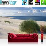 liwwing Vlies Fototapete 104x50.5cm PREMIUM PLUS Wand Foto Tapete Wand Bild Vliestapete - Strand Tapete Meer Dünen Gras Wolken Ostsee beige - no. 1933