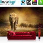 liwwing Vlies Fototapete 300x210 cm PREMIUM PLUS Wand Foto Tapete Wand Bild Vliestapete - AFRICAN SAVANNA - Afrika Savanne Elefant Elefanten Gras Landschaft - no. 011