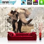 liwwing Vlies Fototapete 104x50.5cm PREMIUM PLUS Wand Foto Tapete Wand Bild Vliestapete - Tiere Tapete Elefant Tier Steinwand Steine Durchbruch Rüssel beige - no. 2430