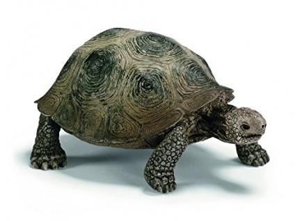 Schleich 14601 - Wild Life, Riesenschildkröte