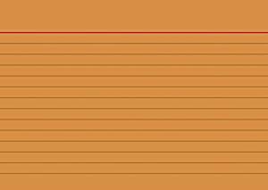 Karteikarten A6 orange liniert
