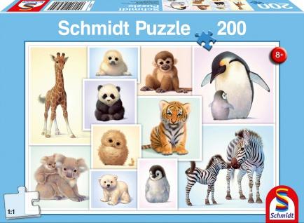 KIPU 200T Tierkinder der Wildniss