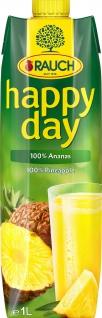 Rauch Happy Day Fruchtsäfte Ananassaft aus Ananaskonzentrat 1000ml