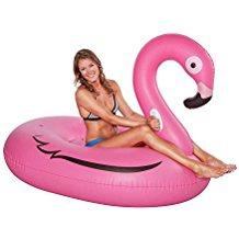 Floater Flamingo