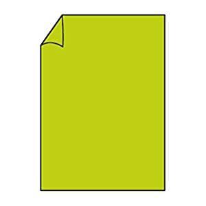 Briefpapier Paperado DIN A4 160 Maigrün