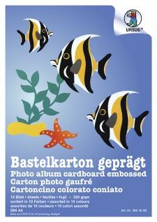 Bastelkarton DIN A3 10 Fb.