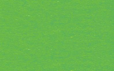 Fotokarton grasgruen
