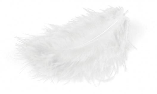 Marabufedern weiss 10/12 cm