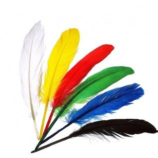 Meyco Indianerfedern in blau weis gelb rot und schwarz 17 bis 20cm