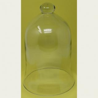 Glasglocke für Pflanzen zum dekorieren oder servieren Höhe 27cm