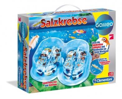 Salzkrebse Basis Set