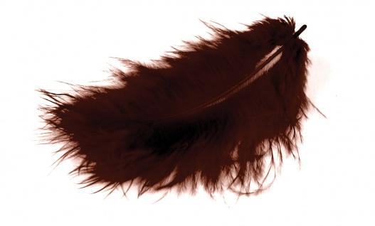 Marabufedern braun 10/12 cm