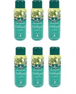 Kneipp Aroma-Pflegeschaumbad Erkältungszeit Eucalyptus, 6er Pack (6 x 400 ml)