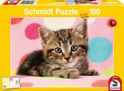 KIPU 100T Süßes Katzenkind