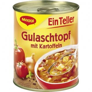 Maggi Ein Teller Gulaschtopf mit Kartoffeln kleine Mahlzeit 315g