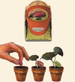 """Weltneuheit - Pflanze Deinen Namen """" JUSTIN """" die Namensbohne"""