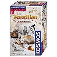 Ausgrabungsset Fossilien