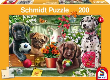 KIPU 200T Verspielte Hundekinder