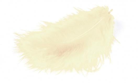 Marabufedern creme 10/12 cm