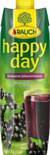 Rauch Happy Day schwarzer Johannisbeere Nektar 1000ml 12er Pack