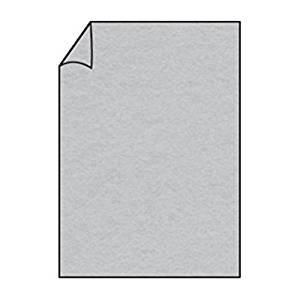 Briefpapier Paperado DIN A4 100 Silber