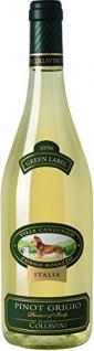 Collavini Villa Canlungo Pinot Grigio IGT Venezia Weißwein trocken 750ml