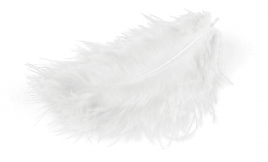 Meyco Marabu Federn in weiss 17 Stück circa 10 bis 12cm lang