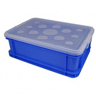 Gies Haushaltsware Plastik Box farblich sortiert 52 x 35.5 x 18 cm