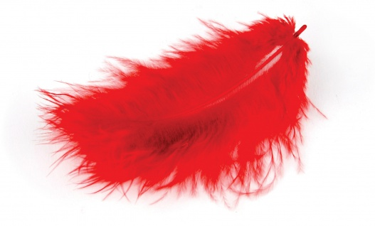 Marabufedern rot 10/12 cm