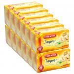 Teekanne Ingwer 12er Pack