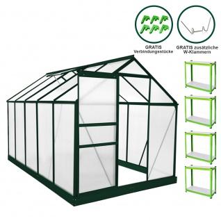 Gewächshaus 1.9m x 3.1m mit Sockel Aluminium Alu Gartenhaus 200cm x 190cm x 310cm Treibhaus Hybrid Glashaus PC-Platten und 2 Regalen