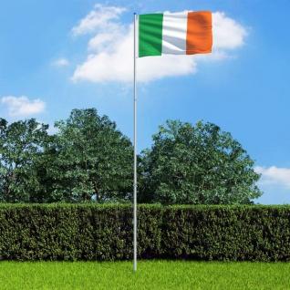 vidaXL Flagge Irlands und Mast Aluminium 6 m