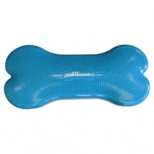 FitPAWS Gleichgewichtstrainer für Haustiere Giant K9FITbone PVC Aqua