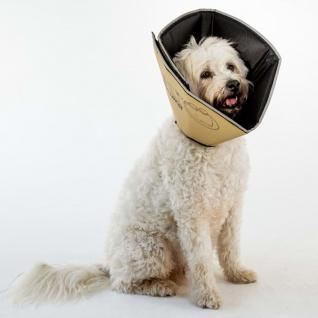 All Four Paws Hundekragen Comfy Cone S Lang 20 cm Hellbraun