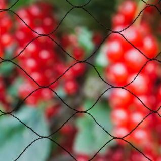 Nature Vogelschutznetz Primo 10x10 m Schwarz 6030407