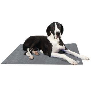 Scruffs & Tramps Kühlmatte für Hunde Grau Größe XL 2719