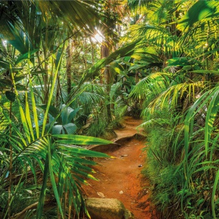 Komar Fototapete Jungle Trail 368×254 cm