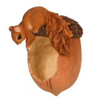 Esschert Design Eichhörnchen mit Futterspender-Eichel 14, 2×10, 8×20, 1cm